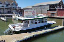 BayWatch Dolphin Tours, Galveston, United States