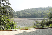 Pookot Lake, Kalpetta, India