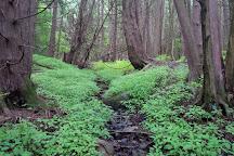 Millbrook Valley Trails, Millbrook, Canada