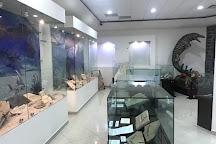 Museo de Paleontologia de Muzquiz, Muzquiz, Mexico