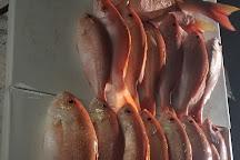 Good Karma Sportfishing, Tavernier, United States