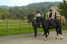 Jill Carenza Equestrian Ltd, Stanton, United Kingdom