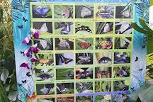 La Casa delle Farfalle, Rome, Italy
