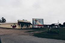 Cherry Bowl Drive-In Theatre, Honor, United States