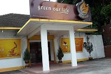 Coffee Tree, George Town, Malaysia