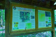 Congaree Creek Heritage Preserve, Cayce, United States