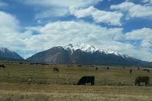 The Adventure Company, Buena Vista, United States