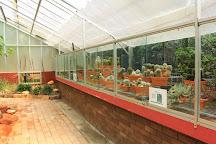 Wollongong Botanic Garden, Wollongong, Australia