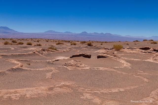 Atacama Pro Desert