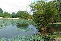 Paya Indah Wetlands, Selangor, Malaysia