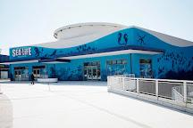 Lido di Jesolo Sea Life Aquarium, Jesolo, Italy