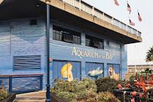 Aquarium of the Bay, San Francisco, United States