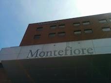 Montefiore Medical Center Moses Division new-york-city USA