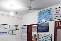 Raja & the Whales, Mirissa, Sri Lanka
