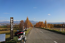 Panorama Road, Biei-cho, Japan