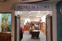 Arizona Museum of Natural History, Mesa, United States