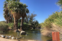 Yuma Conservation Garden, Yuma, United States