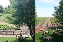 Bogle Winery, Clarksburg, United States