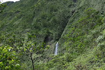 Mt. Waialeale, Kauai, United States