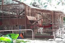 Jaguar Rescue Center, Puerto Viejo de Talamanca, Costa Rica
