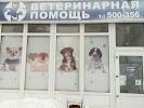 Ветеринарная помощь, улица 5 Августа, дом 28 на фото Белгорода