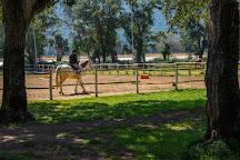 Sea Horse Club, Sabaudia, Italy