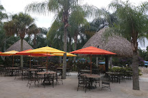 Discovery Cove, Orlando, United States