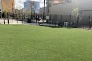 Alex Decoteau Park