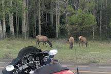 Horseshoe Park, Rocky Mountain National Park, United States