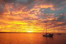 Wild Dolphin Adventures, Key West, United States
