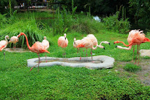 Brevard Zoo, Melbourne, United States