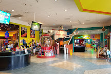Ripley's Believe It Or Not!, Grand Prairie, United States