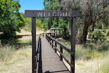Golden Valley Tree Park, Balingup, Australia