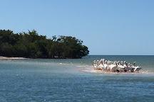 TEN THOUSAND ISLANDS NWR, Naples, United States