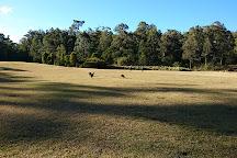 Eurobodalla Regional Botanic Gardens, Batemans Bay, Australia