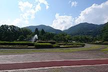 Nagano Prefectural Shinano Art Museum Higashiyama Kaii Gallery, Nagano, Japan
