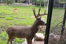 Wildwood Wildlife Park & Nature Center, Minocqua, United States