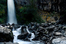 Dawson Falls