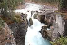 Sunwapta Falls, Jasper National Park, Canada