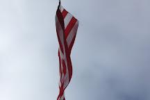 Acuity Flagpole, Sheboygan, United States