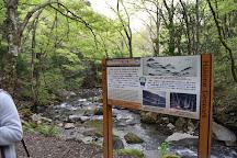 Chisuji Falls, Hakone-machi, Japan