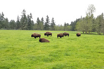 Northwest Trek Wildlife Park, Eatonville, United States