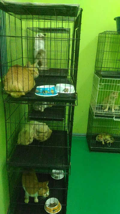 Klinik Haiwan Emelia Veterinary Clinic
