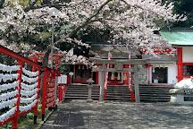 Awaodori Kaikan, Tokushima, Japan