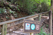 Minnehaha Falls, Lakemont, United States