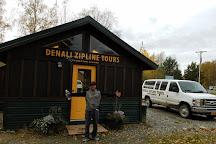Denali Zipline Tours, Talkeetna, United States