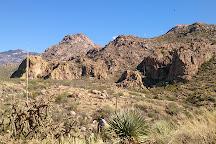Catalina State Park, Tucson, United States