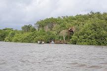 Guanaroca Lagoon, Cienfuegos, Cuba