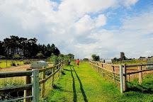 Hatfield Park Farm, Hatfield, United Kingdom