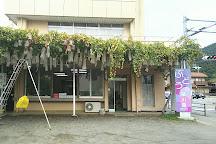Budo no Hayakawa Orchards, Kofu, Japan